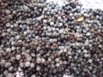 elderberry pile, pre-syrup