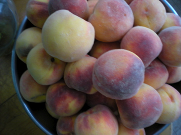 Do Peaches Belong In The Fridge The Botanist In The Kitchen,Wheat Pennies Value Chart