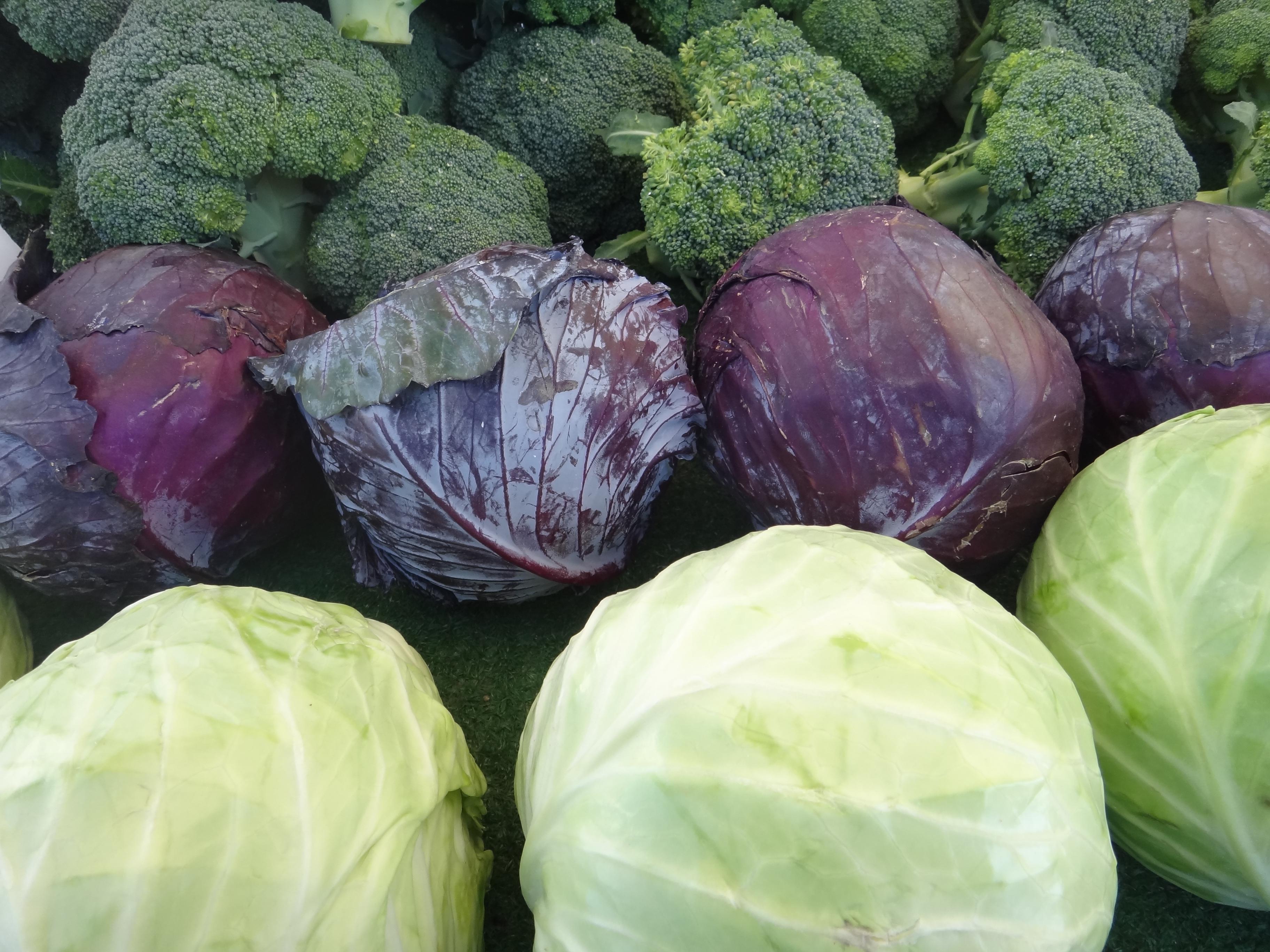 Beyaz lahananın faydaları Kanserden kilo vermeye kadar