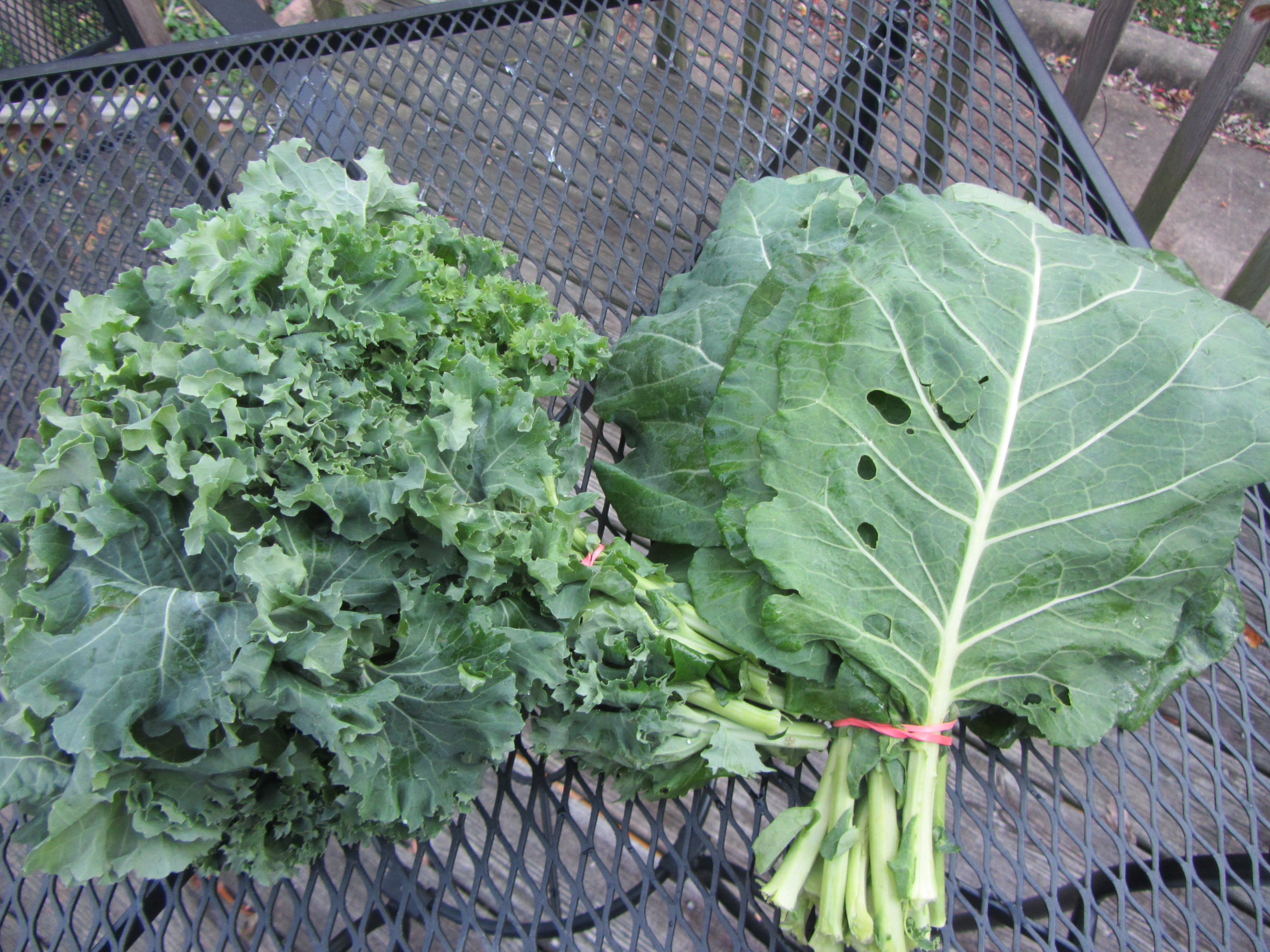 Mustard And Collard Greens Food Network