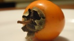 Japanese persimmon, still very much astringent