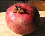 pomegranate fruit (persistent calyx and stamens visible)