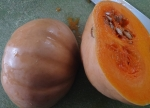 squash: the hard outer shell is receptacle fused to exocarp; the flesh that is cooked is mesocarp, and the stringy endocarp is scooped out