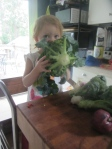My toddler.  Sampling the broccoli.
