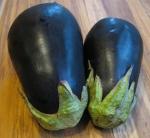 Solanaceae: EggplantPair