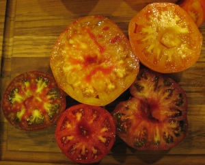 Tomato halves, showing the compartments called locules filled with seeds attached to viscous placenta.