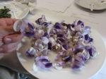 Snail vine (Fabaceae) flowers