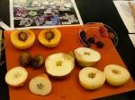 Rose family fruit (in a lab exercise). Smallest seeds are in the blackberries and raspberries in the petri dish in the far right corner, the largest in the tree-borne stone fruits peach and plum on the left