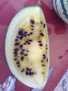 This watermelon definitely has seeds
