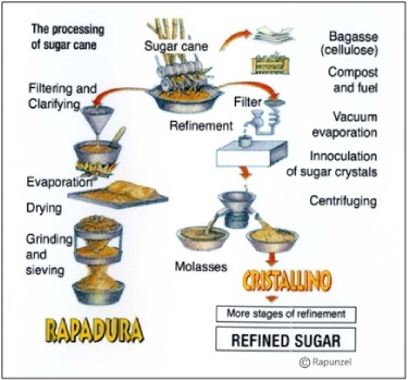 Figure 4. Alternative processing of sugarcane juice. Figure from the Rapunzel company, which manufactures rapadura.