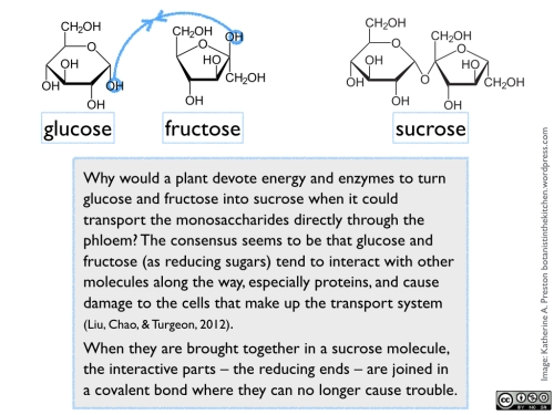 Sugars: glu, fru, and sucrose
