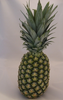 Bromeliaceae: whole pineapple